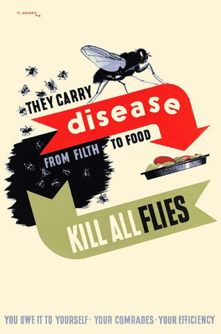 Kill All Flies