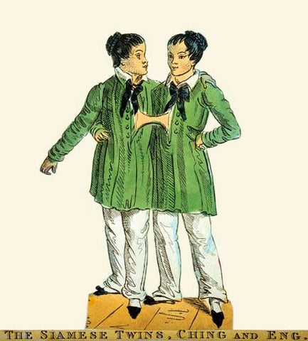 The Siamese Twins, Chang and Eng