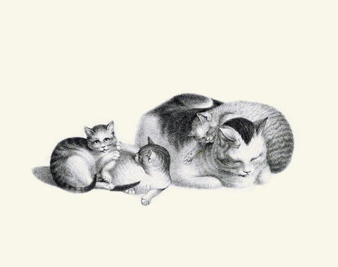 Sleeping Cat and Kittens