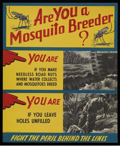 Are You A Mosquito Breeder?