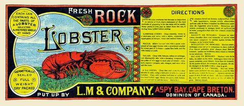 Fresh Rock Lobster