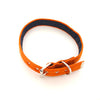 Dog Collar - Orange