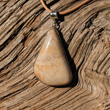 Load image into Gallery viewer, Petrified Wood Cabochon and Sterling Silver Pendant (SSP 1078)