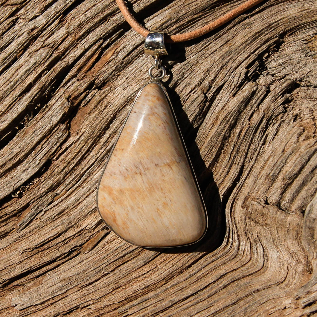 Petrified Wood Cabochon and Sterling Silver Pendant (SSP 1078)