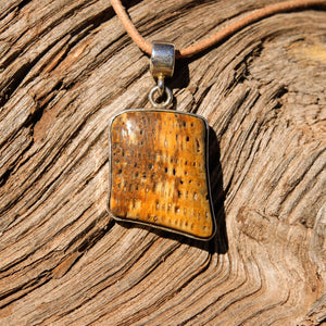 Petrified Palm Cabochon and Sterling Silver Pendant (SSP 1093)