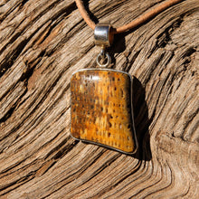 Load image into Gallery viewer, Petrified Palm Cabochon and Sterling Silver Pendant (SSP 1093)