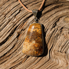 Load image into Gallery viewer, Petrified Palm Cabochon and Sterling Silver Pendant (SSP 1094)