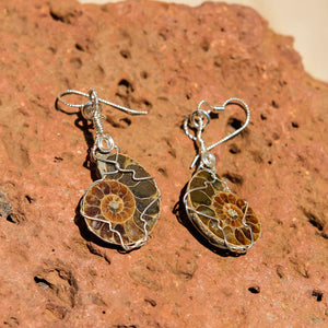 Ammonite and Sterling Silver Wire Wrap Earrings (SSWWE 1001)