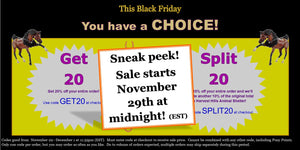 Black Friday Sale:  Will you Get 20 or Split 20?