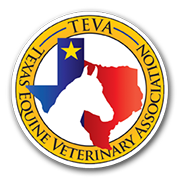 Hurricane Harvey Equine Rescues - How You Can Help