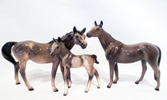 Hagen Reanker Native Dancer, Thoroughbred Mare, and Thoroughbred Foal by Maureen Love