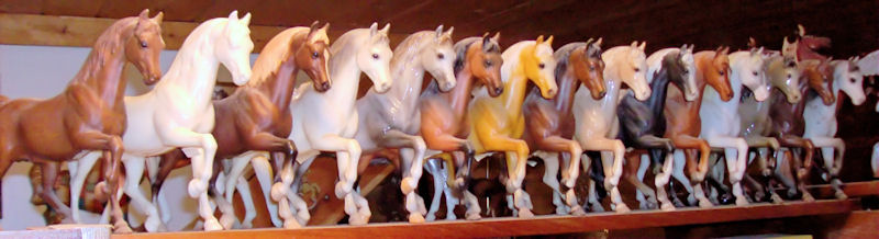 A collection of Family Arabian Stallions