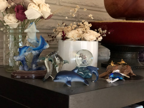 Ilana's dolphins on display