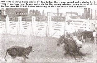 Poco Lena with Don Dodge aboard - Photo credit circle-s-quarter-horses.com