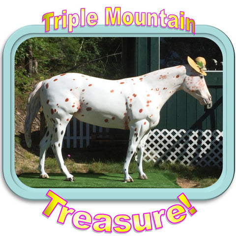 Triple Mountain's life-sized Appaloosa named Treasure by our customers
