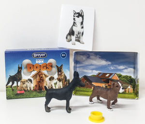 Doberman and Beagle, Pocket Box Dogs set