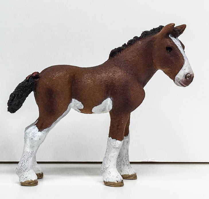 Clydesdale Foal, Bay