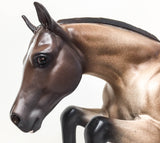 Newsworthy - Custom Bay Roan - Rosewater