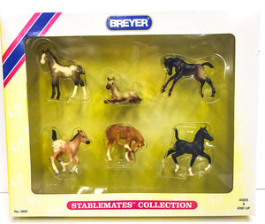 Stablemates Collection - Set of 6 Foals
