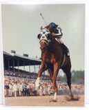 Secretariat Fan Special Set!  Four photographs, matted artist print, and Jockey Card