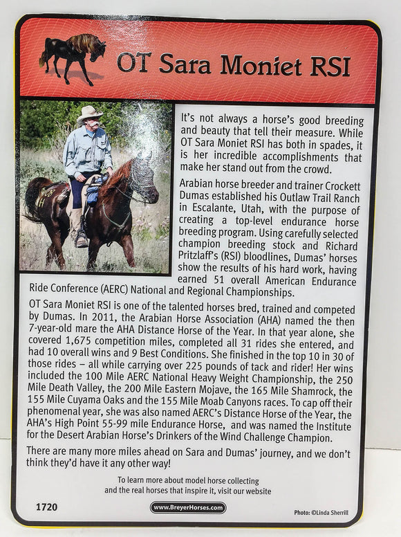 Arabian Mare ~ OT Sara Moniet RSI Bio Card - triple-mountain