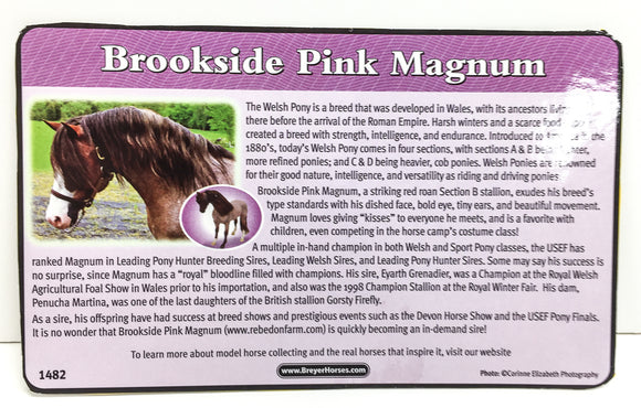 Bouncer ~ Brookside Pink Magnum Bio Card - triple-mountain