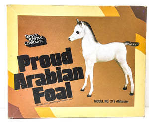 Box:  Proud Arabian Foal, Alabaster - triple-mountain