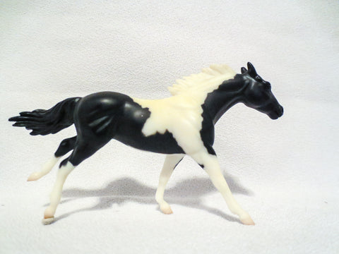 Thoroughbred, Black Pinto - JCP SR