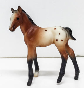 Thoroughbred Standing Foal, Bay Appaloosa - Sears SR