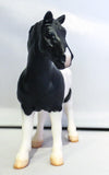 Vaulting Draft Horse, Black Pinto