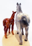 Appaloosa & Colt, Grey Mare with Sorrel Foal - triple-mountain