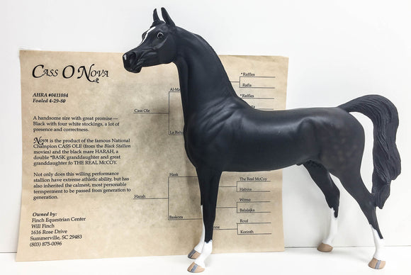 Arabian ~ Cass O Nova - The Hobby Horse News SR