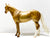 Ideal Stock Horse ~ Shez Stone Gold