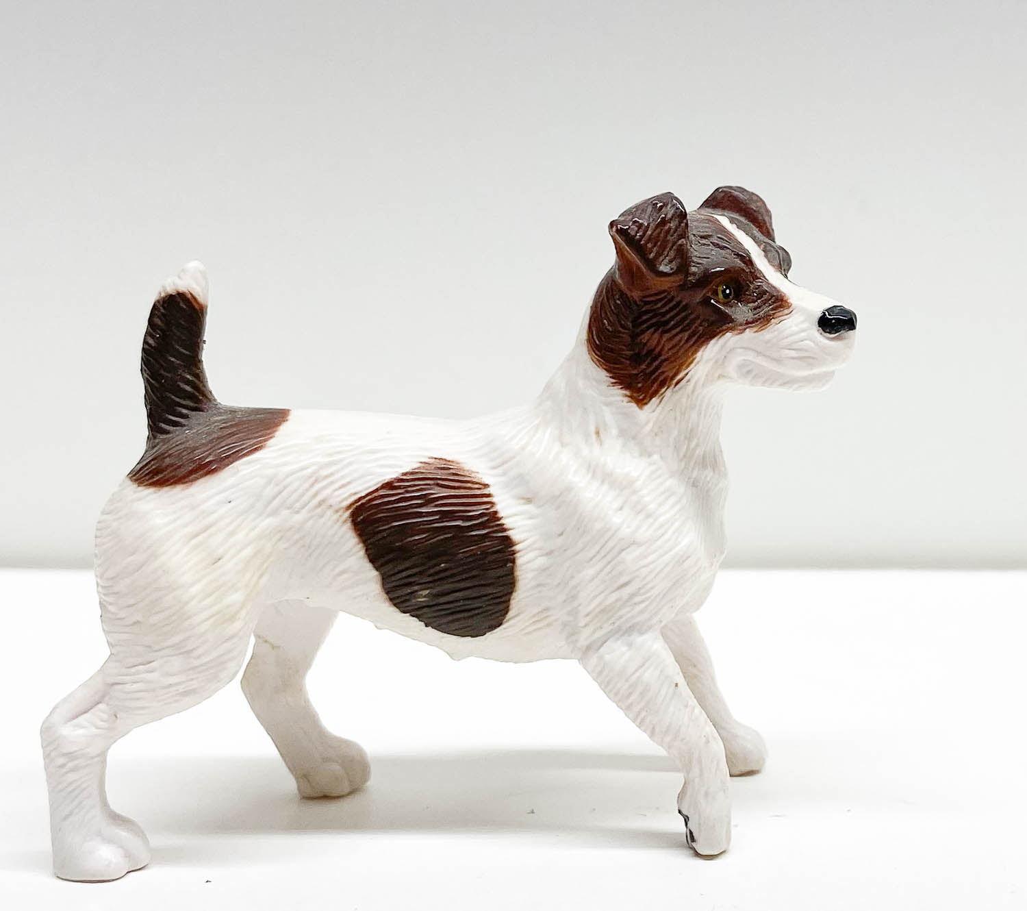 Jack Russell Terrier, Chocolate & White - Original Release