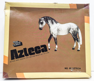 Box: Foundation Stallion ~ Azteca