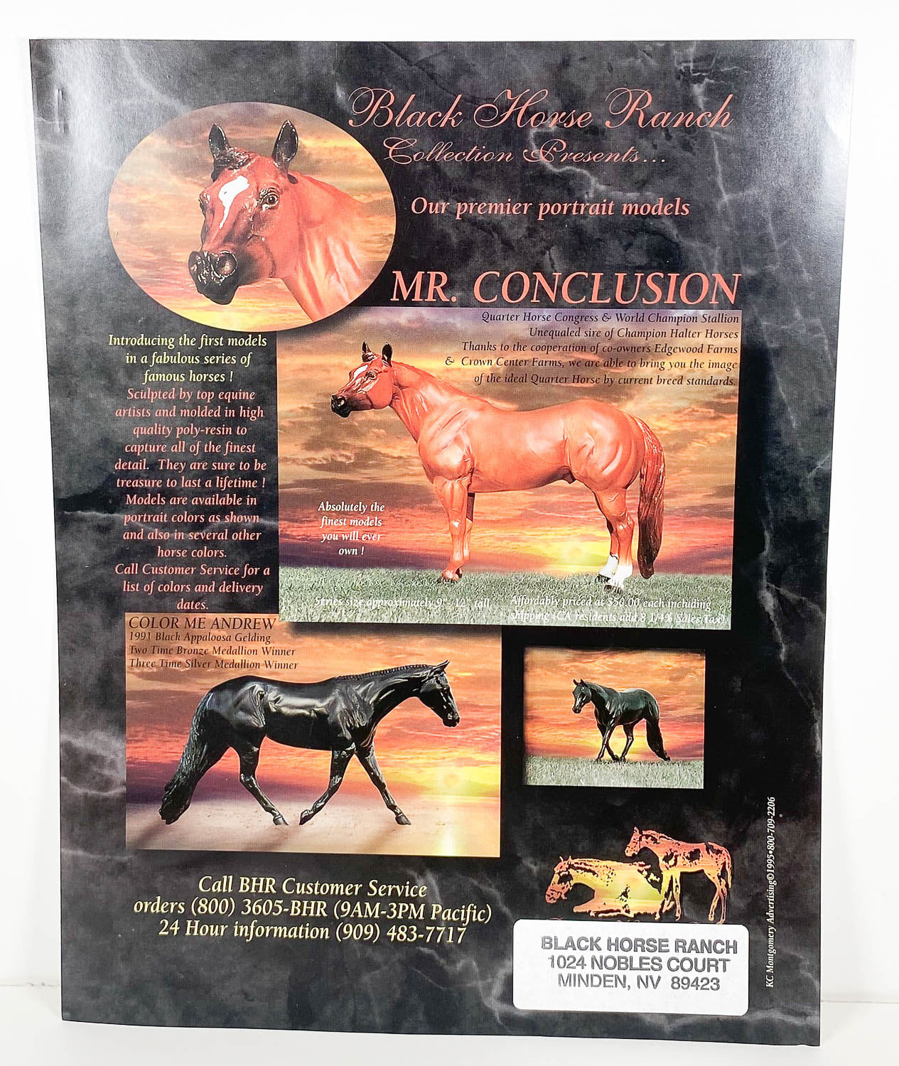 Ad Sheet - Black Horse Ranch ~ Mr. Conclusion & Color Me Andrew