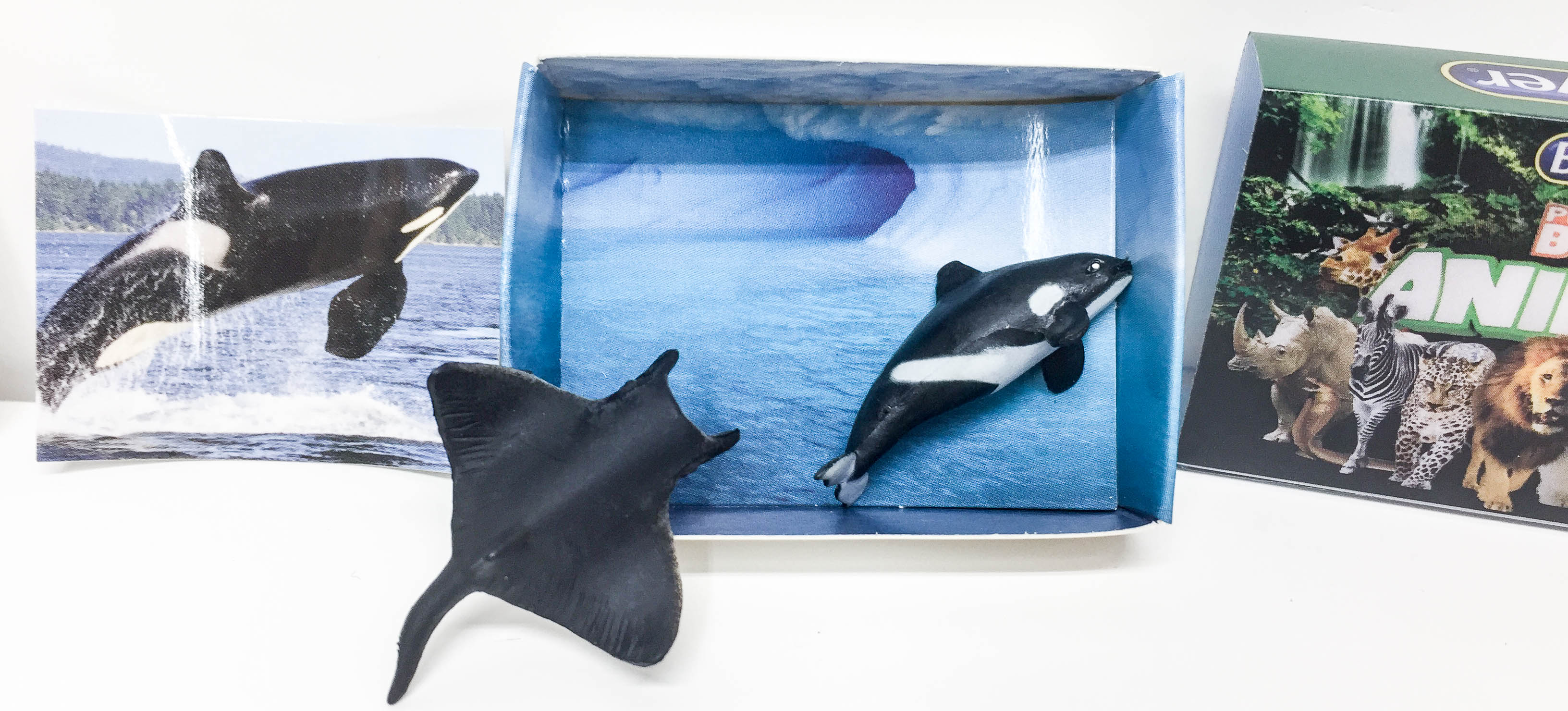 Killer Whale and Sting Ray w/ Pkg