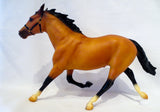 Pacer, Buckskin (Light Bay) - JC Penney SR