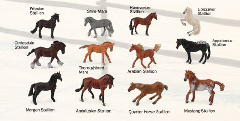Box of Mini Horses - ADVANCE SALE