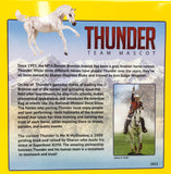 Ashquar ~ Thunder, Mascot of the Denver Broncos