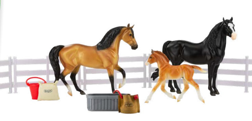 Spanish Mustang Family - ADVANCE SALE