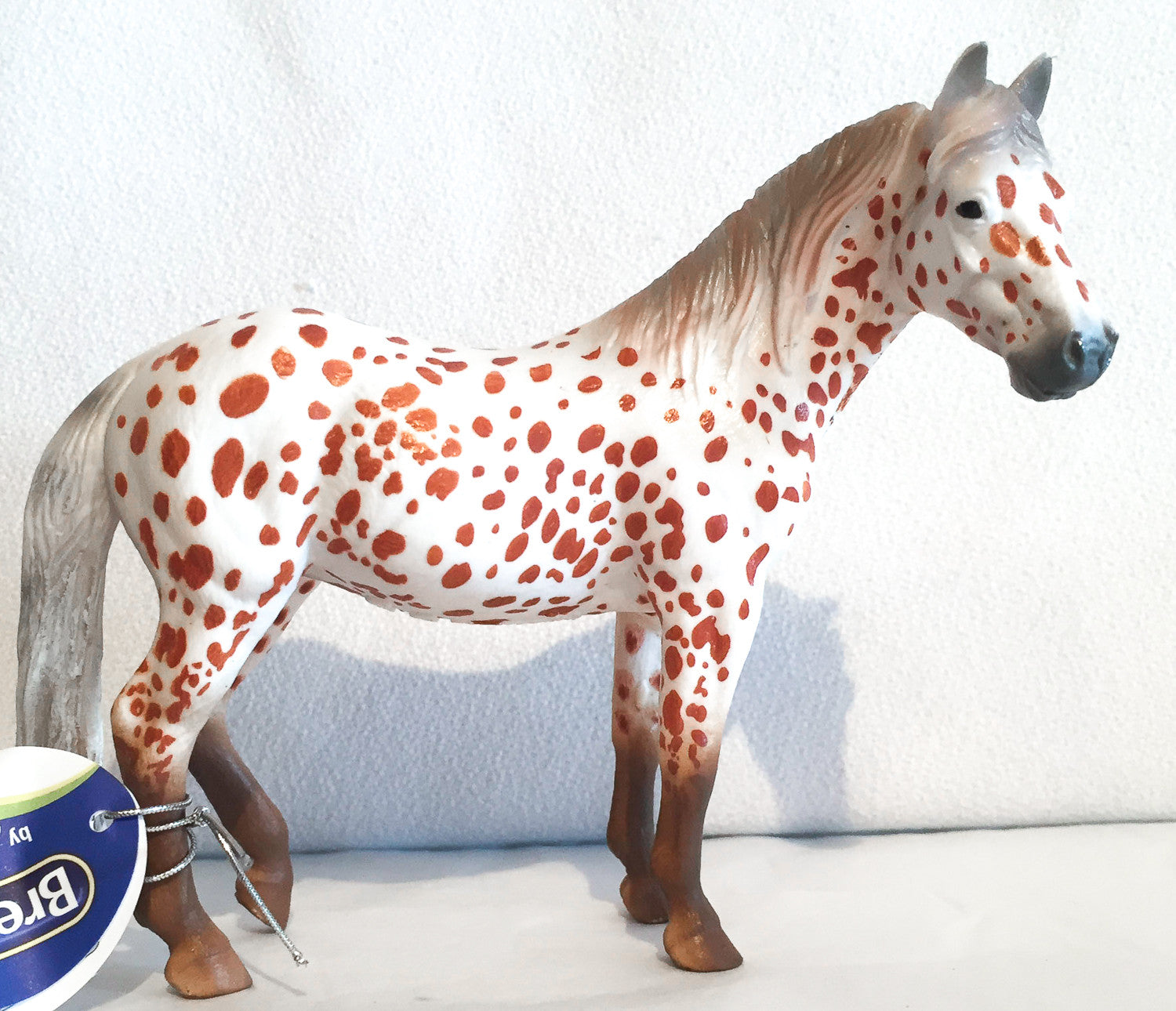Collecta British Spotted Pony Chestnut Appaloosa 88750 Triple Mountain Model Horses