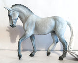 Trakehner Stallion, Grey