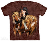 Horse T-Shirts - ADULT size X-LARGE (choose your design)