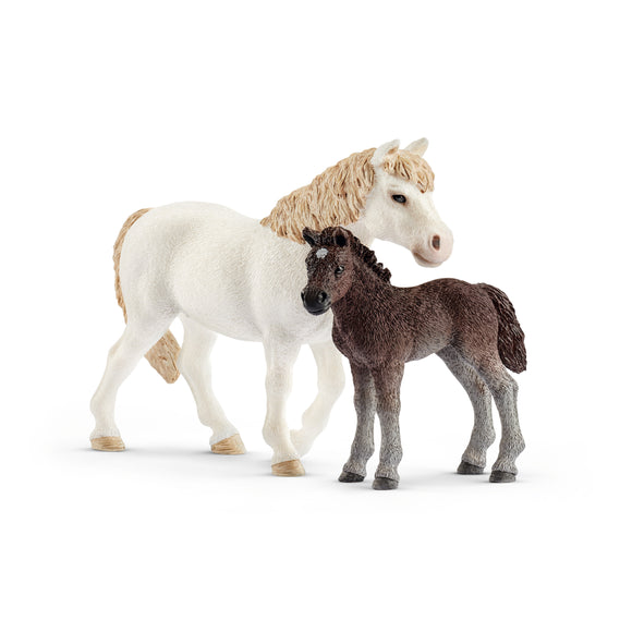 Pony Mare and Foal Set