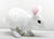 Bunny, White (Large)