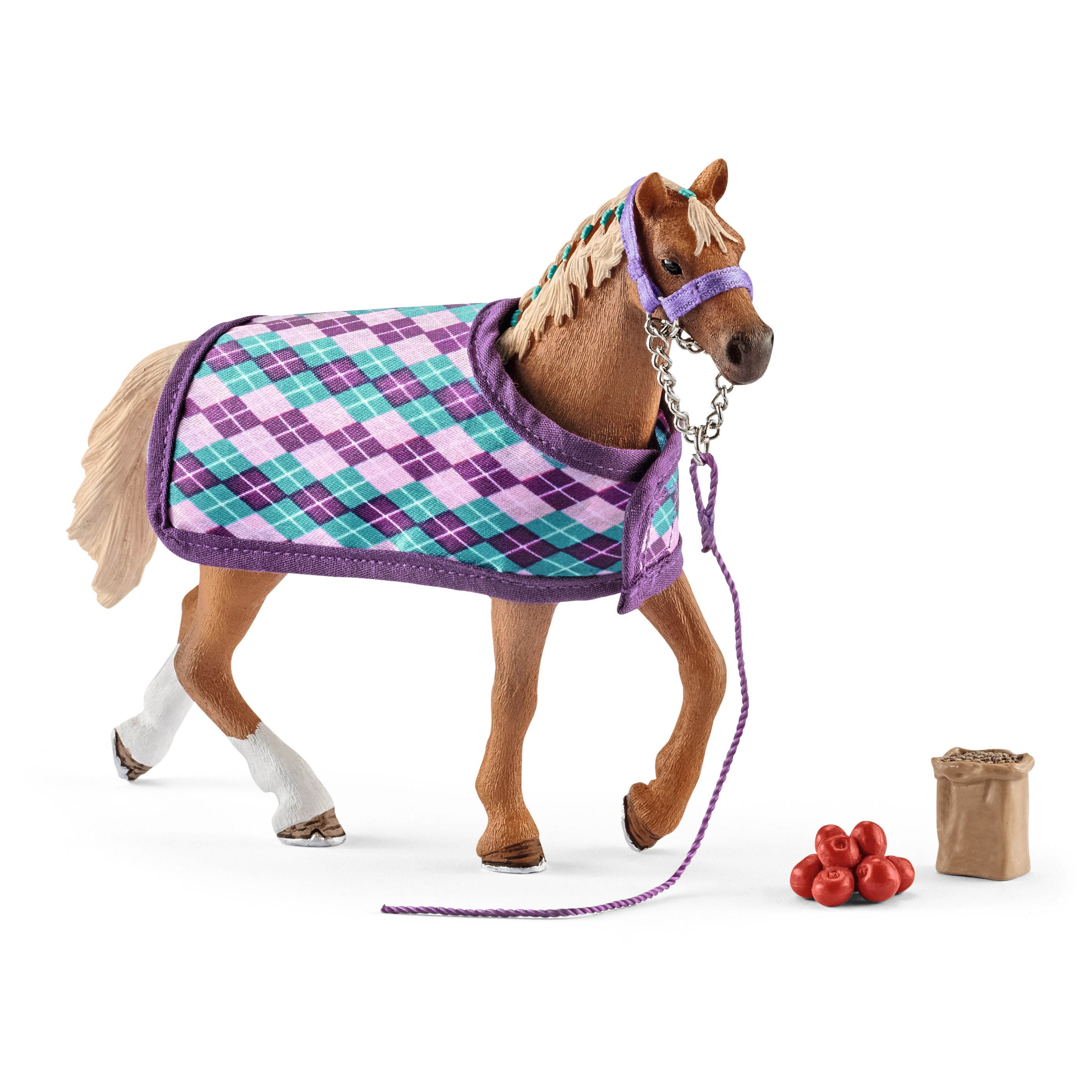 English Thoroughbred with Blanket, Halter and Treats