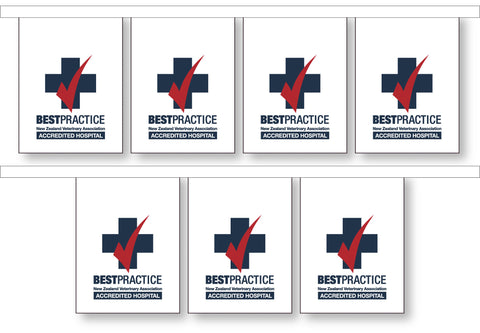Vets Association Best Practice Bunting - Hospital