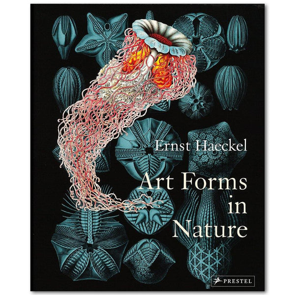Art Forms in Nature - Library of Congress Shop