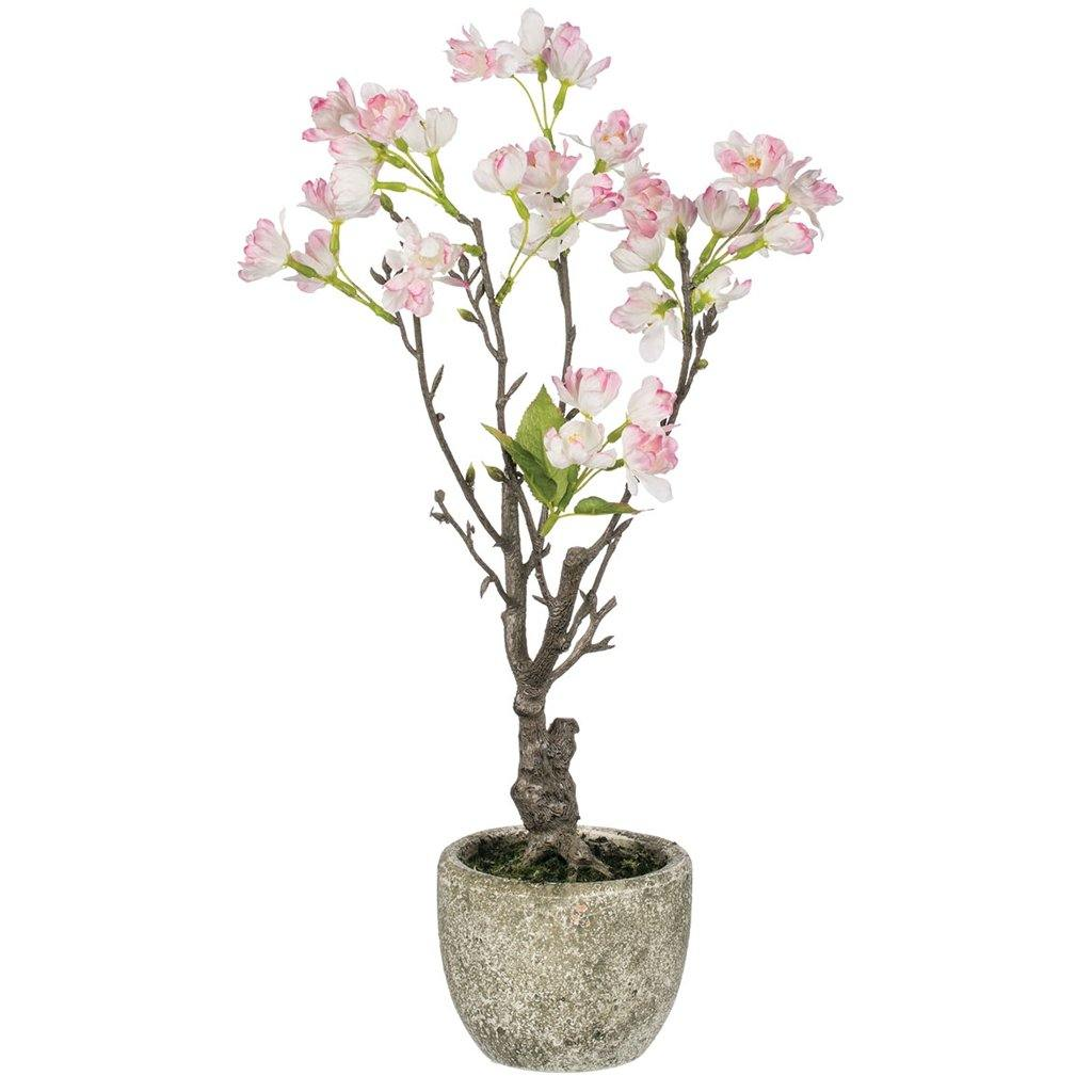 Cherry Blossom Potted Plant - Library of Congress Shop